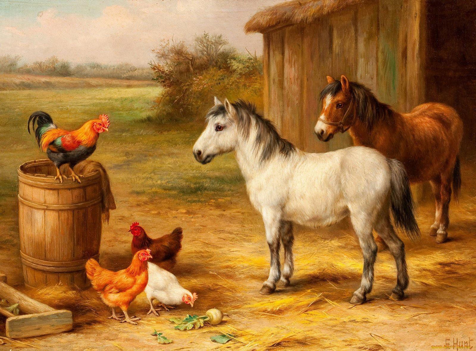 картинка скотный двор домашние животные одинокая девушка